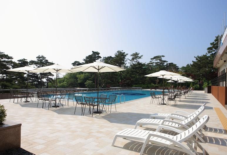 ホテル マレモンス, 束草, 屋外プール