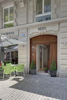 Picture of Hotel PLATZHIRSCH in Zurich