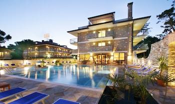 תמונה של Hotel & Wellness Fra i Pini בלינאנו סאביאדורו