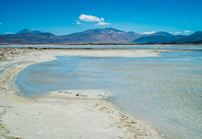 Noi Casa Atacama, San Pedro de Atacama, ชายหาด