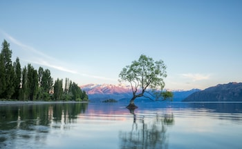 Bild vom The Moorings in Wanaka