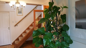 Book this Bed and Breakfast Hotel in Bury St Edmunds