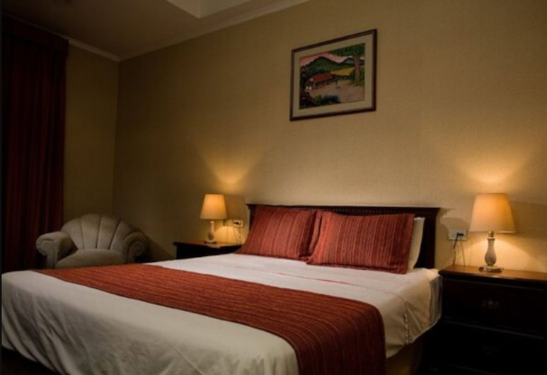 Hotel Capital, San Salvador, Single Room, 1 Double Bed, Guest Room