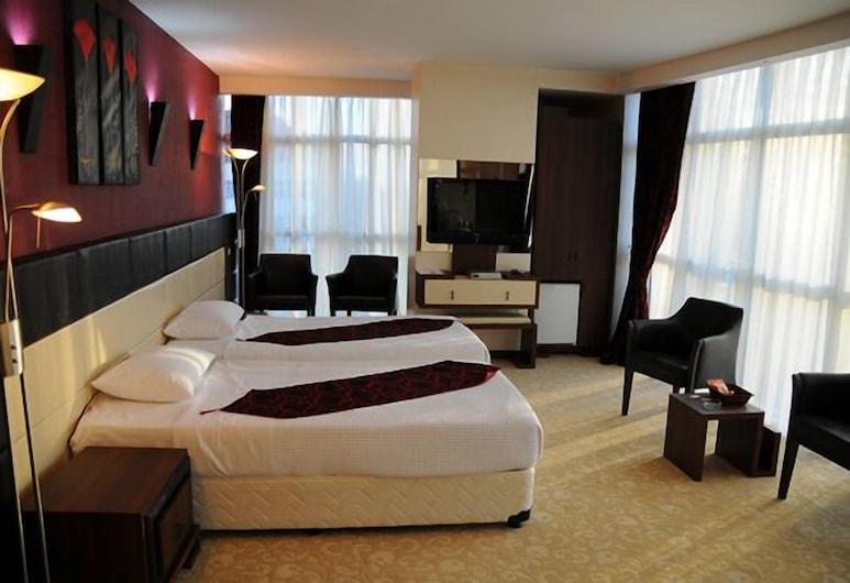 Hotel Grand Eregli, Караденіз-Ереглі, Номер