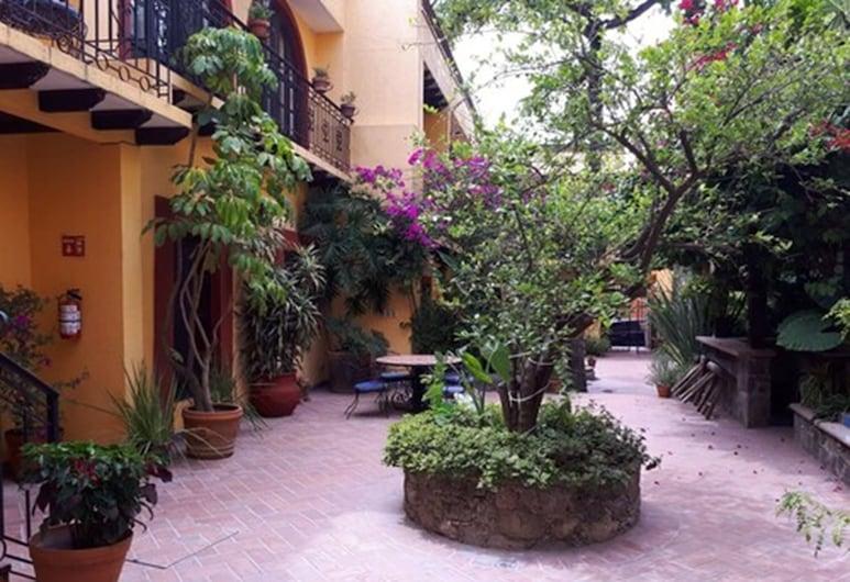 Casa Mia Suites, San Miguel de Allende, Áreas del establecimiento