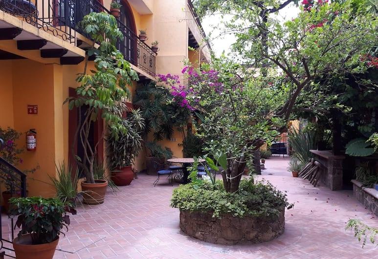 Casa Mia Suites, San Miguel de Allende, Khuôn viên nơi lưu trú