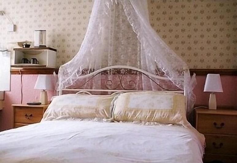 Llanryan Guest House, Blackpool, Soba za goste