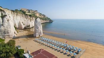 תמונה של Hotel Mediterraneo בוייסטה