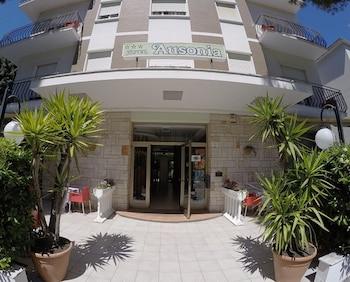Gambar Hotel Ausonia di Rimini