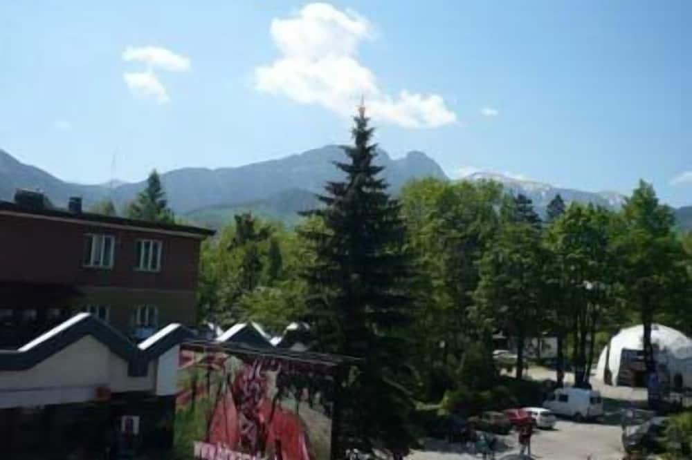 Standard Twin Room - Mountain View