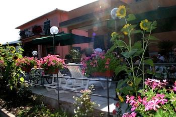 Picture of Green Quiet & Marvica in Pignone