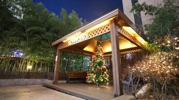 在首尔的明洞天空花园 2 号酒店照片