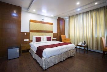 新德里金棕櫚三人房飯店的相片