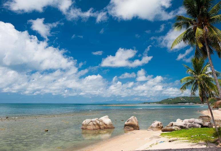慵懶一天蘇梅海灘度假飯店, 蘇梅島