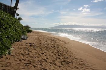 Lahaina bölgesindeki Ocean View Suite at Royal Kahana resmi