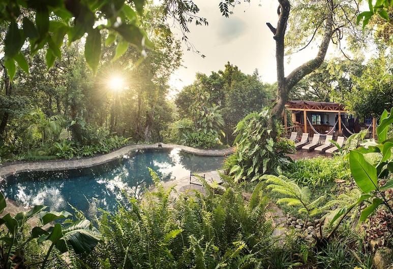 Monteverde Lodge & Gardens, Μοντεβέρντε, Εξωτερική πισίνα