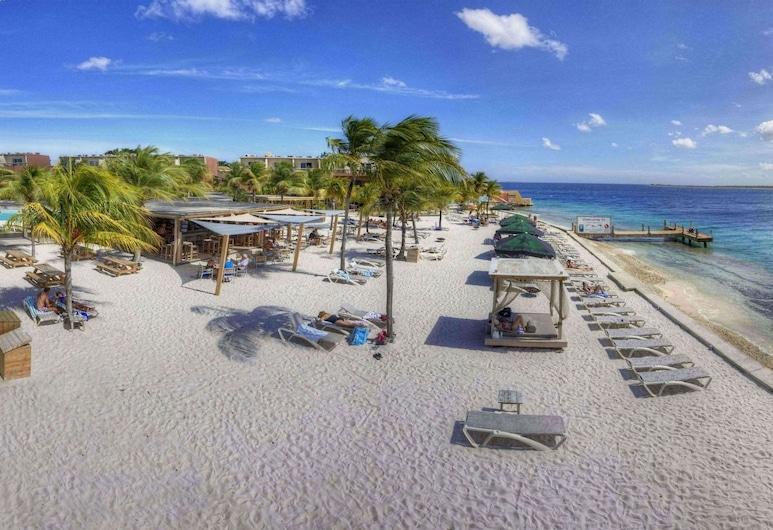 Eden Beach Resort, Kralendijk, Beach