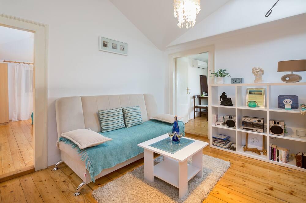 Apartman u centru, 3 spavaće sobe, kuhinja - Dnevni boravak