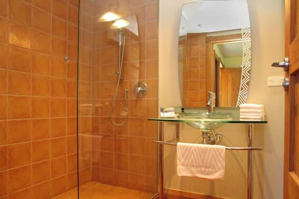 2-Bed Stonewall Studio - Bathroom