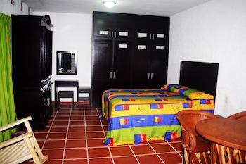 Puerto Vallarta bölgesindeki La Iguana de Oro Studios & Apartments resmi