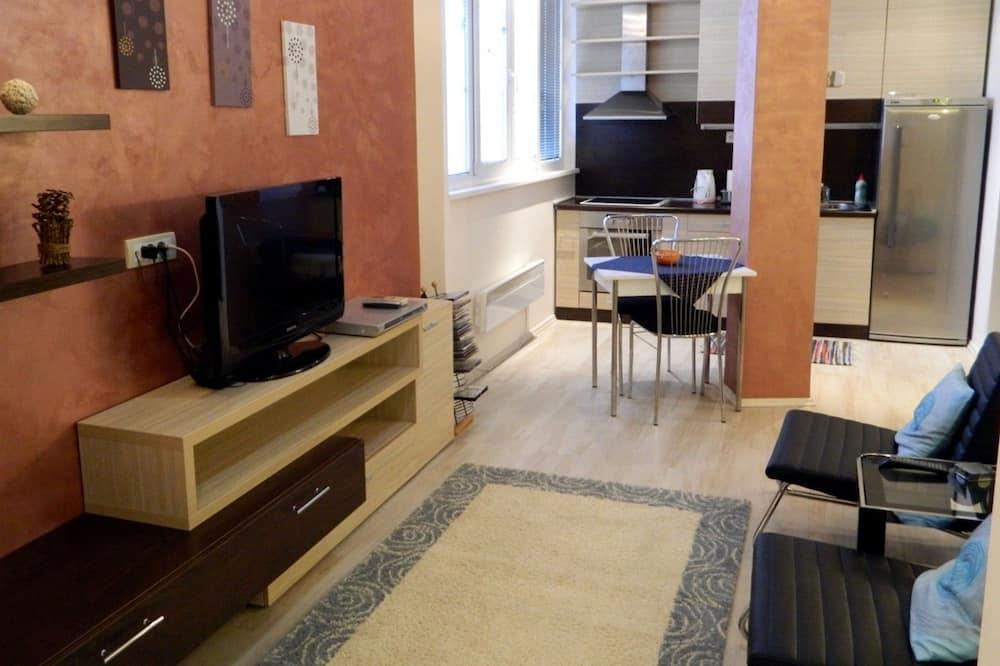 Standard-Apartment, Küche - Wohnbereich