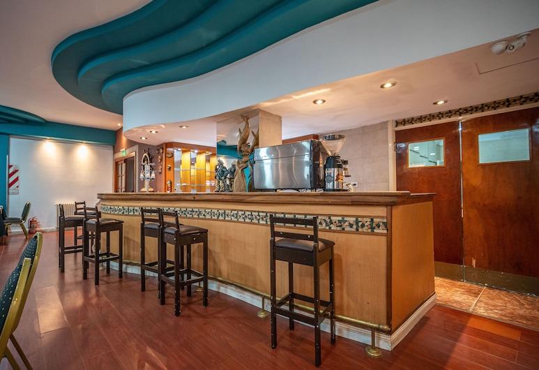 Gran Hotel Mar del Plata, Mar del Plata, Hotellbar