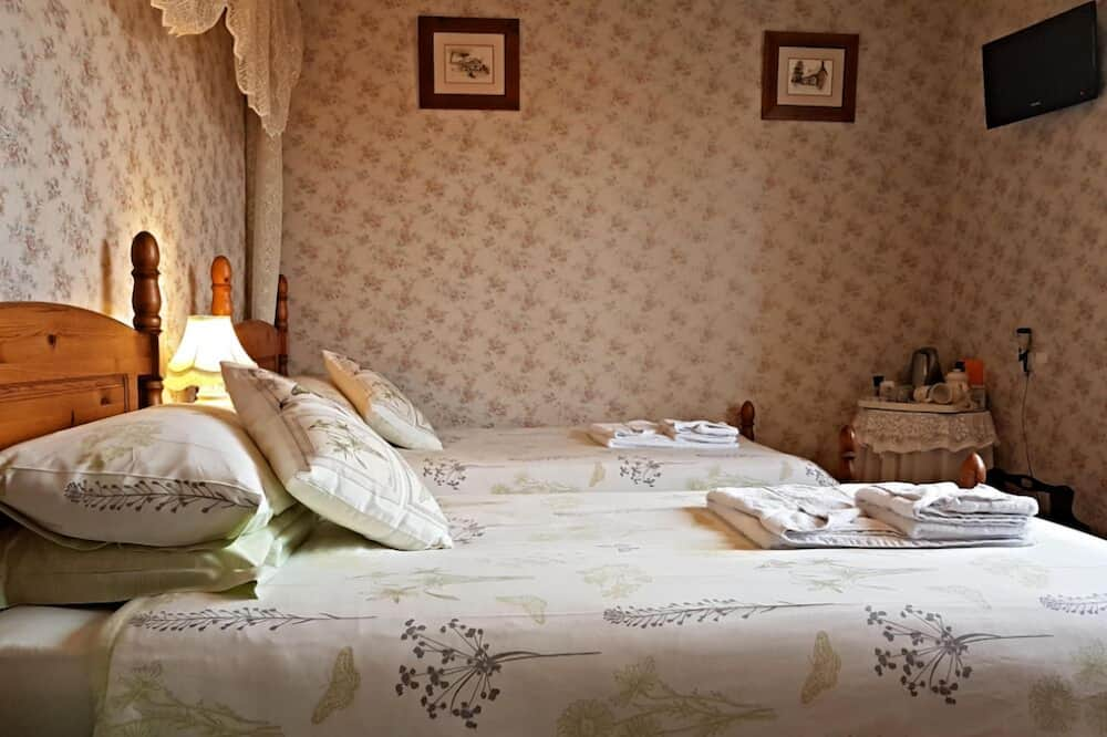 Twin Room, 2 Twin Beds, Private Bathroom (Room 3) - Guest Room