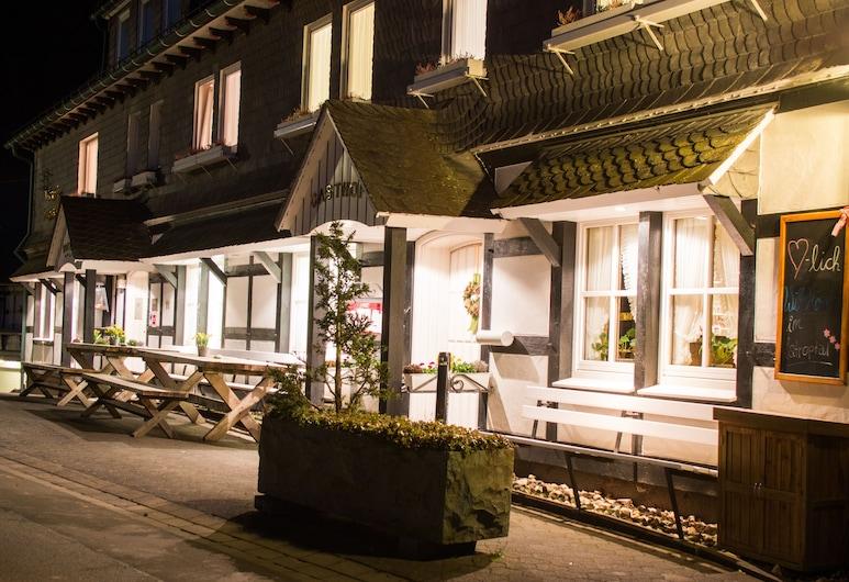 Hubertushöhe, Schmallenberg, Πρόσοψη ξενοδοχείου - βράδυ/νύχτα