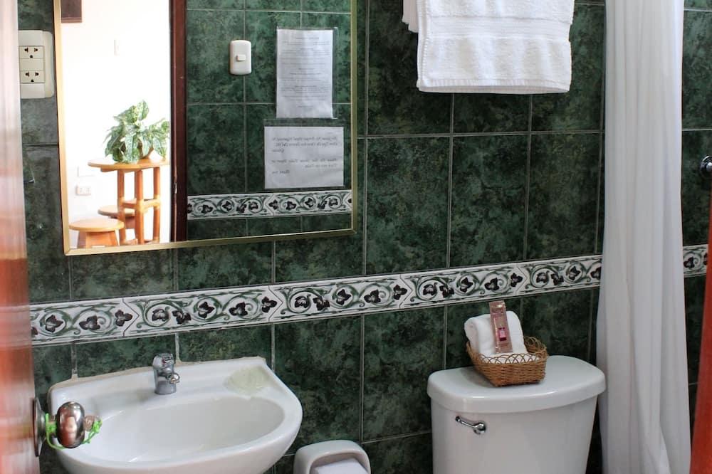 Estudio Estandar 1 Habitacion - Koupelna