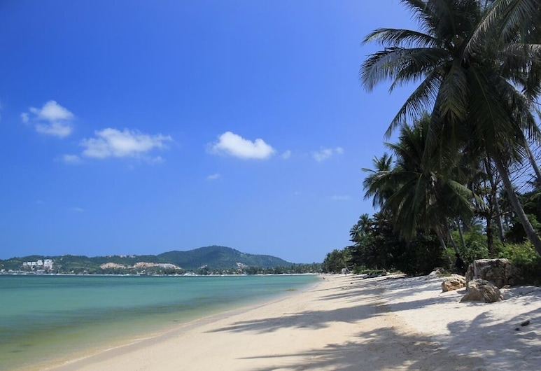 Cocooning Hotel, Ko Samui, Pláž