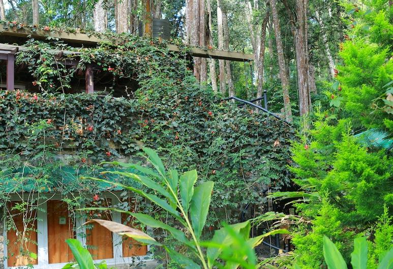 Green Spaces Munnar, Devikolam, Property Grounds