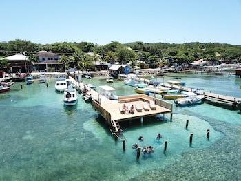 Picture of Splash Inn Dive Resort in Roatan