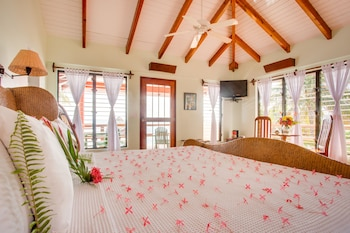 Enter your dates for our Placencia last minute prices