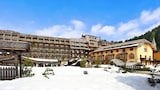 Hotel unweit  in Madonna di Campiglio,Italien,Hotelbuchung