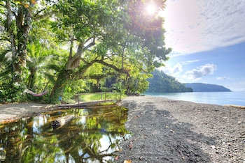 Picture of Playa Nicuesa Rainforest Lodge in Golfito