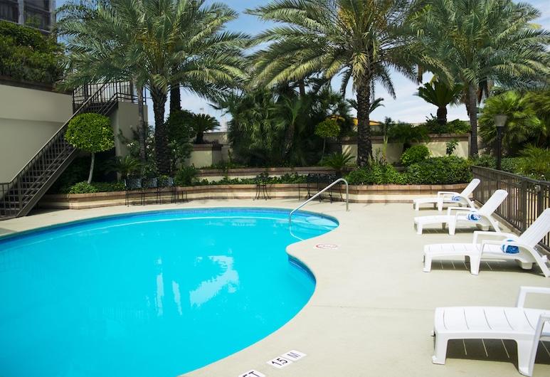 iStay Hotel Monterrey Histórico, Monterrey, Pool