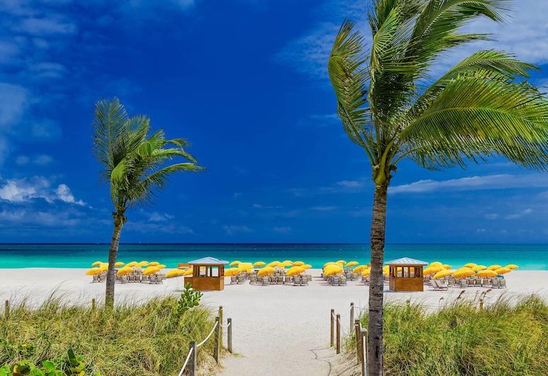 Royal Palm South Beach Miami, a Tribute Portfolio Resort, Maiamibīča, Pludmale