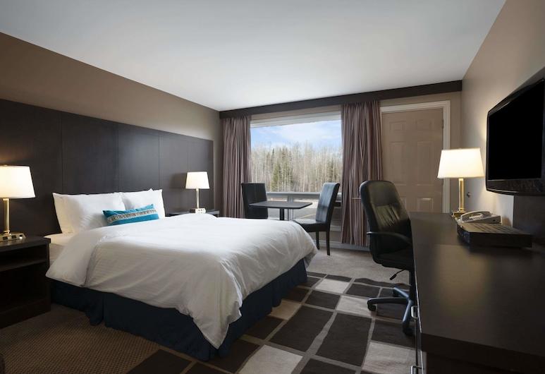 卡普斯卡辛溫德姆旅遊旅館, 卡普斯卡辛, 標準客房, 1 張加大雙人床, 非吸煙房, 客房