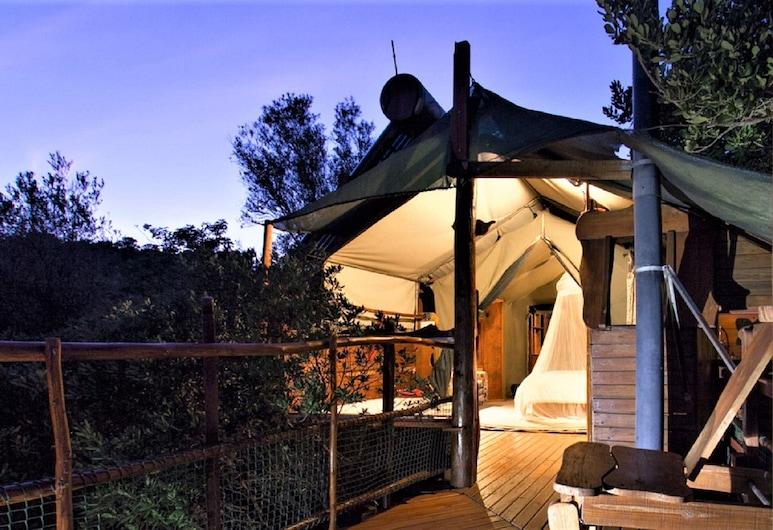 Teniqua Treetops, Knysna, Romantic Tree House (Honeymooon), Guest Room