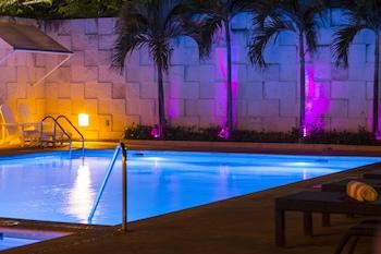 在阿卡普尔科(及周边地区)的阿卡普尔科岛假日酒店照片