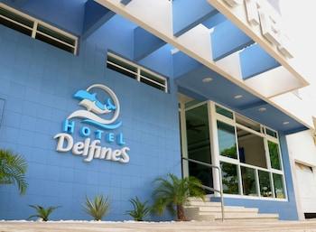 Veracruz bölgesindeki Hotel Delfines resmi