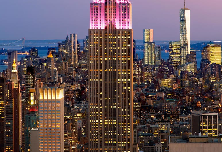 하얏트 플레이스 뉴욕 미드타운 사우스, 뉴욕, 스탠다드룸, 킹사이즈침대 1개, 시내 전망, 시내 전망