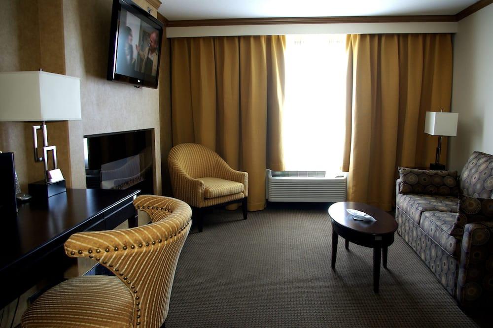 Suite, 1 cama King size con sofá cama, para no fumadores, cocina básica (with Sofabed) - Sala de estar