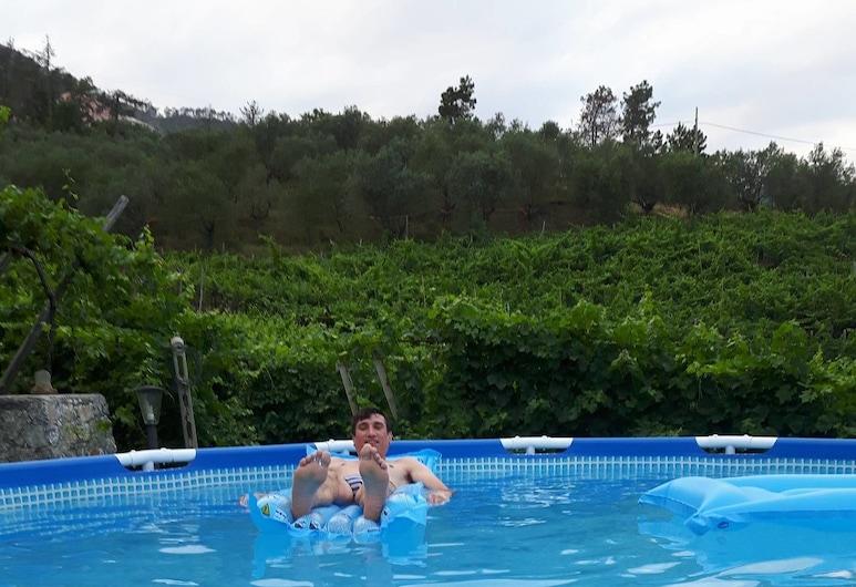 翠綠山丘農莊民宿, 萊萬托, 室外游泳池