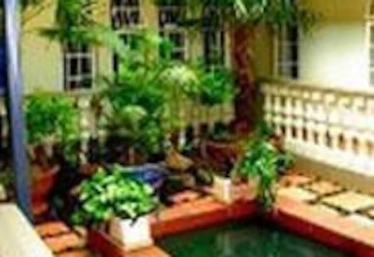 Goodey's Guesthouse, Pretoria, Property Grounds