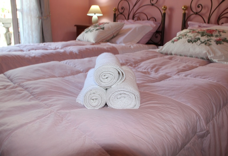 Duca's Guest House, Turin, Double or Twin Room, Private Bathroom, Guest Room