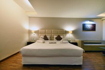 Hình ảnh Hotel Platinum Inn tại Ahmedabad