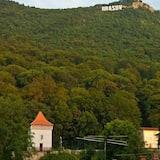 Basic-Einzelzimmer, Bergblick - Wohnbereich