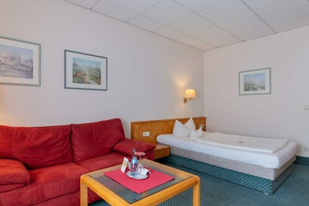 Economy Single Room - Living Area