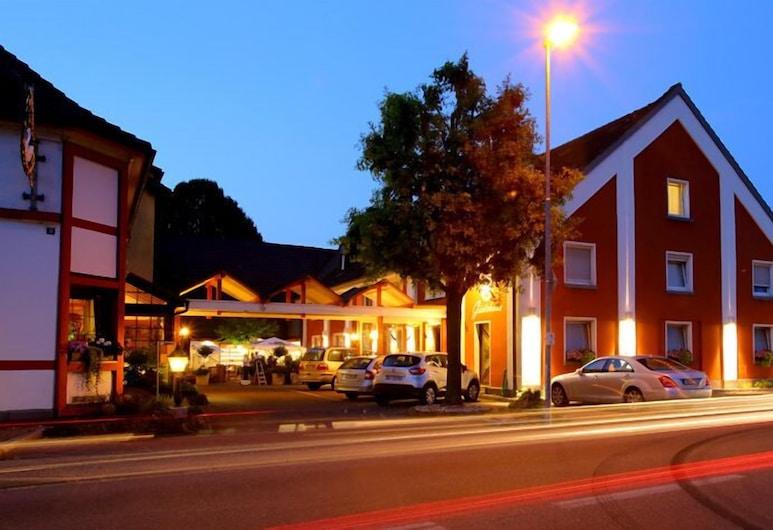 Hotel Landgasthof Schwanen, Kehl, Fachada del hotel de noche